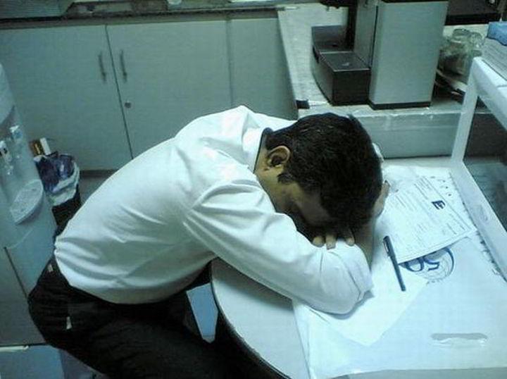 دراسة: الموظف التونسي أكثر موظفي العالم