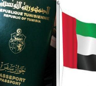 نائب سابق بالمجلس التأسيسي:'' لسنا دمى في أيادي دول الخليج''