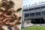 المجلس الوطني لحزب المبادرة يصادق على اندماج الحزب مع حركة تحيا تونس