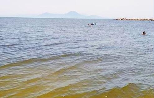 هذه  اسباب تغير لون البحر حلق الوادي و قرطاج