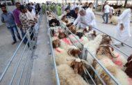الكويت: خطية مالية لكل من يذبح أضحيته دون ترخيص
