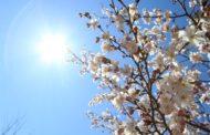 التوقعات الجوية ليوم الإثنين 24 فيفري 2020