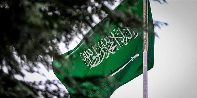 """الدنمارك وهولندا تستدعيان سفيري السعودية بسبب """"أنشطة تجسس"""""""