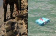 نابل: البحر يلفظ 30 كلغ