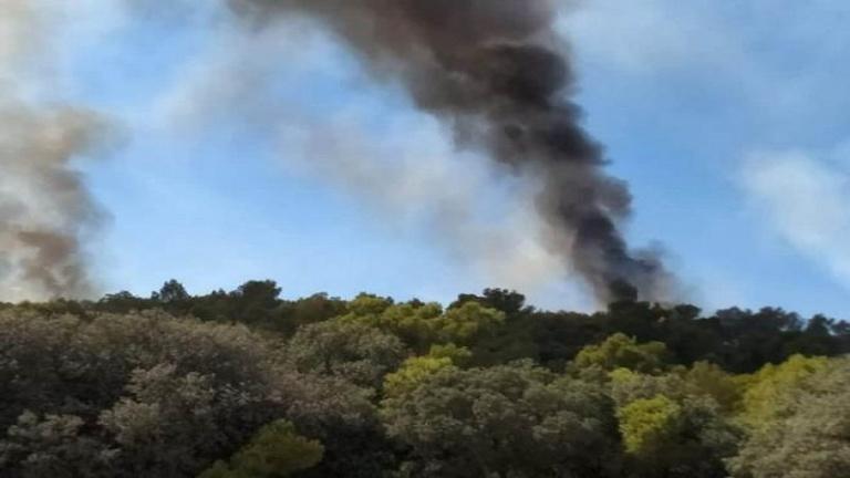 سليانة: السيطرة على حريق جبل بوكحيل بجهة الكريب