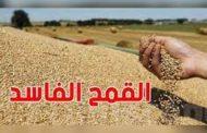 (قضيّة القمح