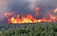 القيروان: توسع رقعة الحرائق.. و إجلاء 19 عائلة!!