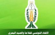 الاتحاد التونسي للفلاحة والصيد البحري يدعو الى فتح ملفات الفساد في قطاع الفلاحة!!