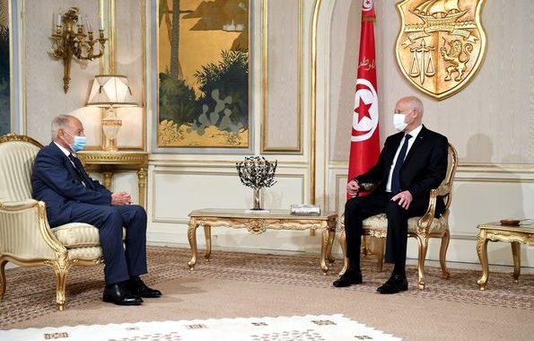 (بالفيديو) - سعيّد لأبو الغيط: نرفض كل أشكال الوصاية على تونس أو التدخل في شؤونها..